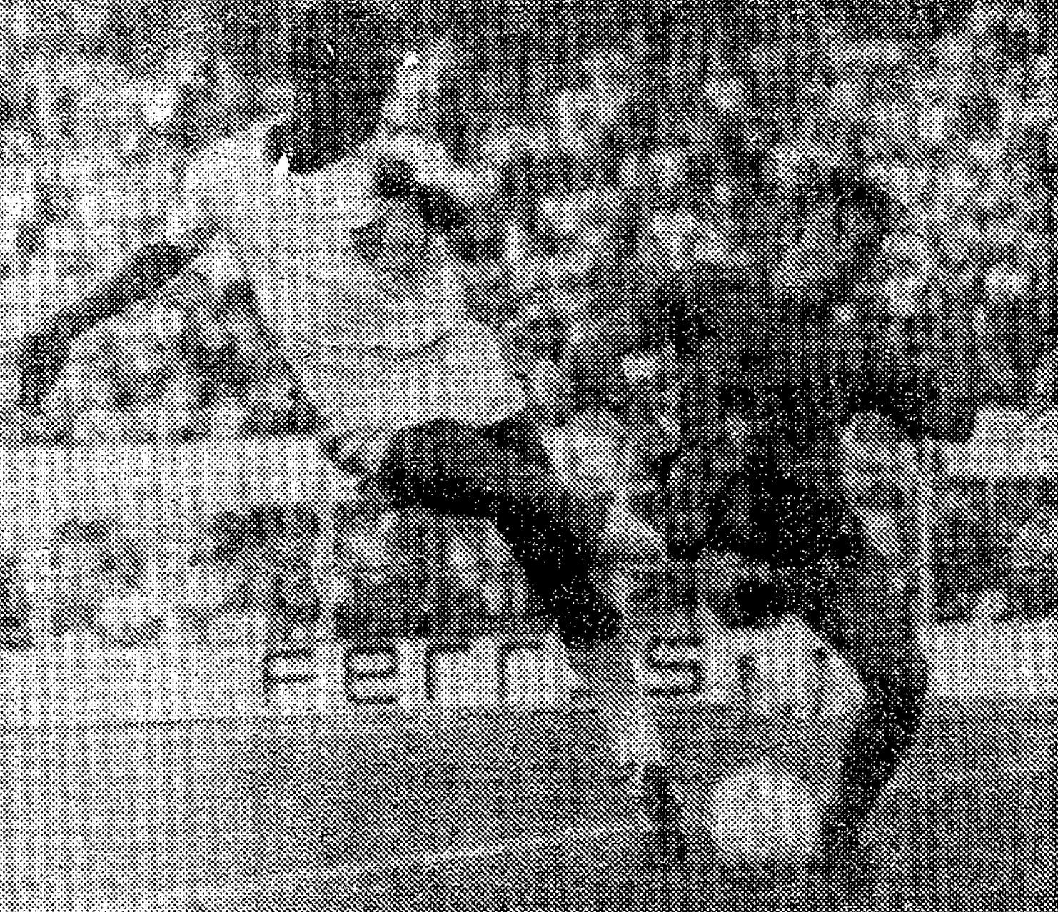 16.10.1977: Sevilla FC 1 - 0 Valencia CF